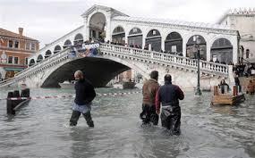 venezia sei